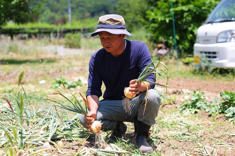 お話を聞けば、山梨市の畑で無農薬・減肥料、時に無肥料で、1人で野菜を作られているとのこと。