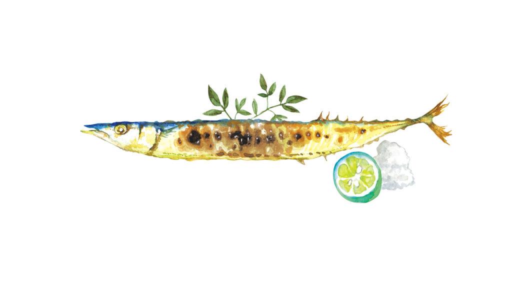 DHAやEPAの多く含まれる青魚