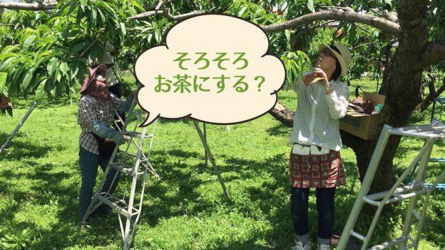 農繁期キター!!畑で食べたいお茶菓子ベスト10